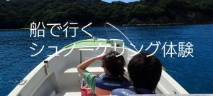 boat_mini